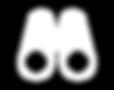 Fernglas Icon