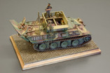 Gold - Bergepanther Ausf G  1/72