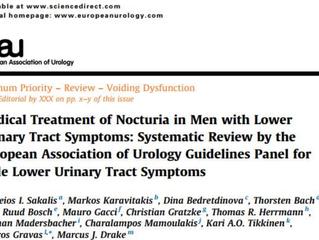 Δημοσίευση της μετα-ανάλυσης για την θεραπεία της νυκτουρίας από της ομάδας εργασίας των συμπτωμάτων
