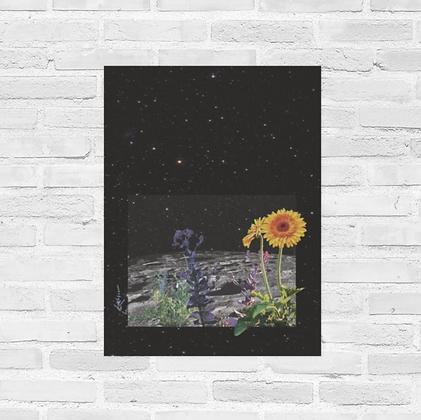 """Space Garden Poster 18""""x24"""""""