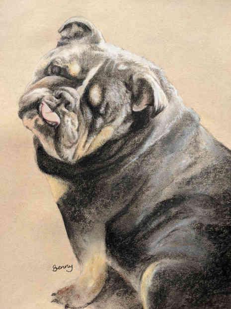 Benny the Bulldog