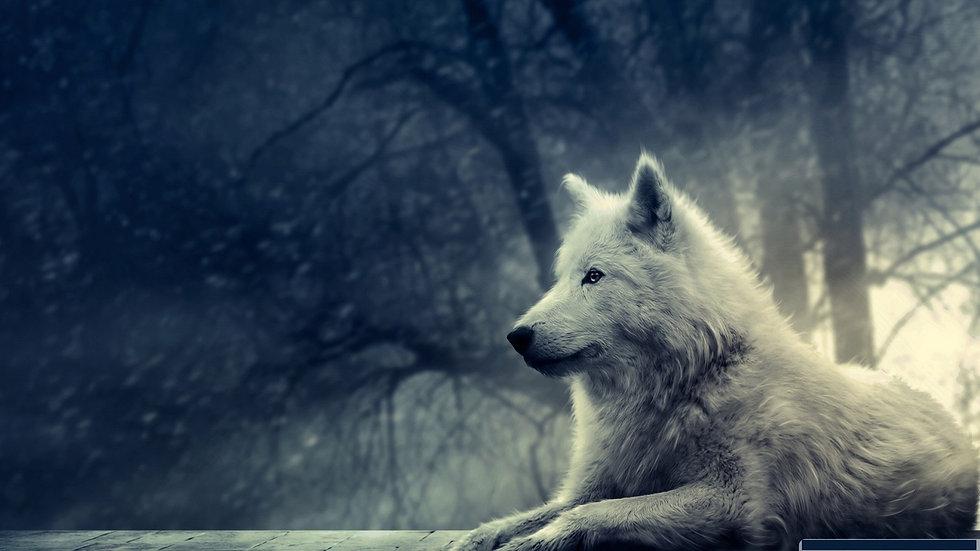 White Wolf, Ferocious Alpha