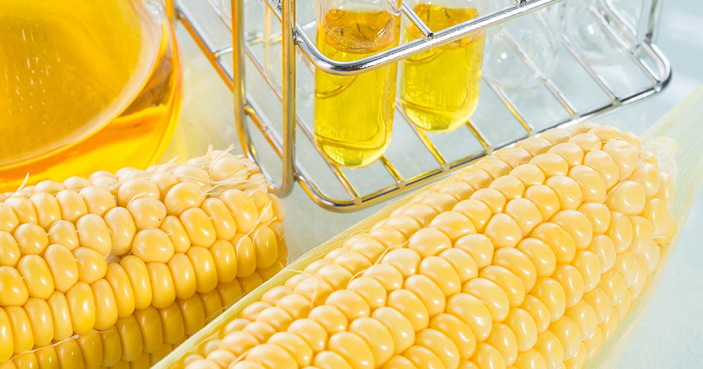 high fructose corn syrup common effects intolerance