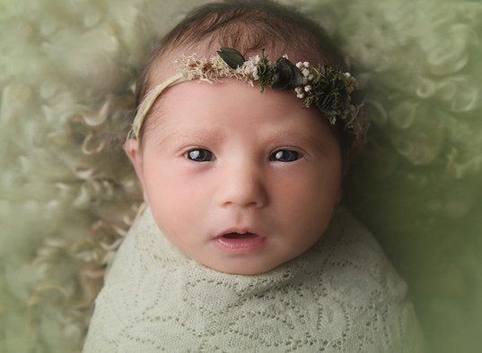 Beautiful Creations Photography -12.jpg