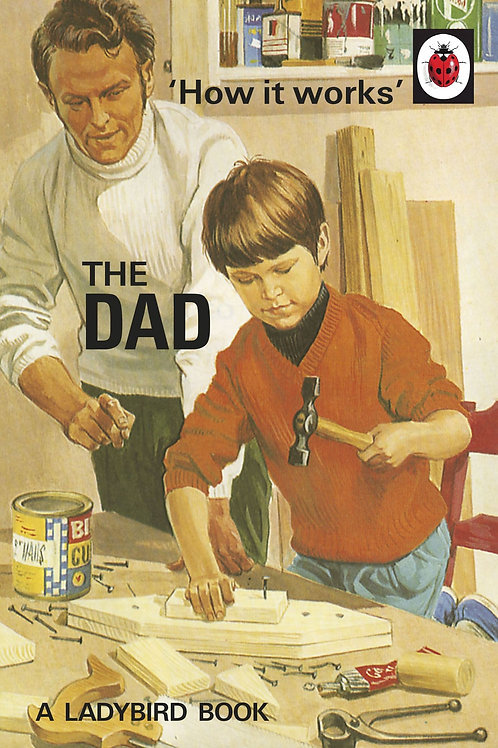 How It Works: The Dad (Ladybird for Grown Ups)