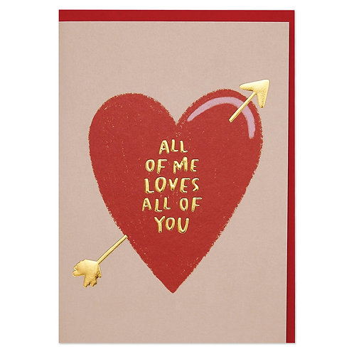 All of Me loves all of You' Romantic Valentine's Day Card