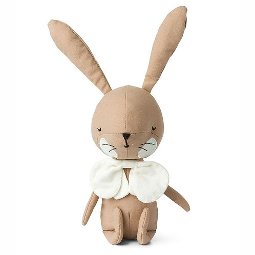The Rabbit and His Magnificent Bow-Tie  - Pink