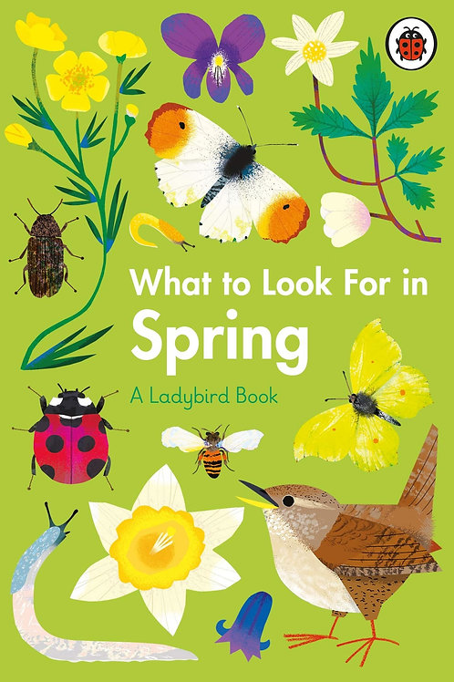 What To Look For In Spring