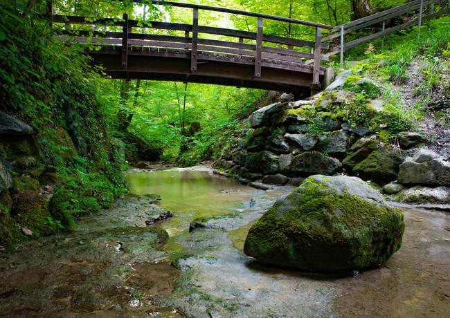 Brücke über den Sagentobelbach