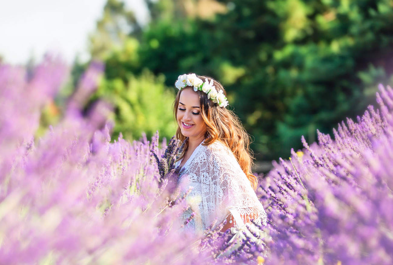 lavender field maternity photography