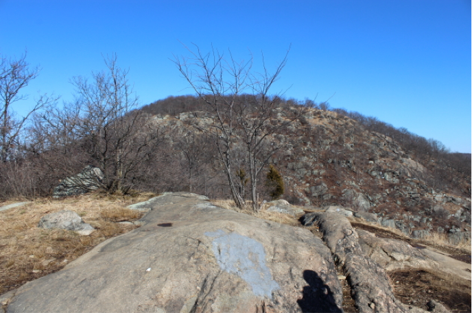 Unboring-Exploring-Breakneck-Ridge-Submission_13.2.png