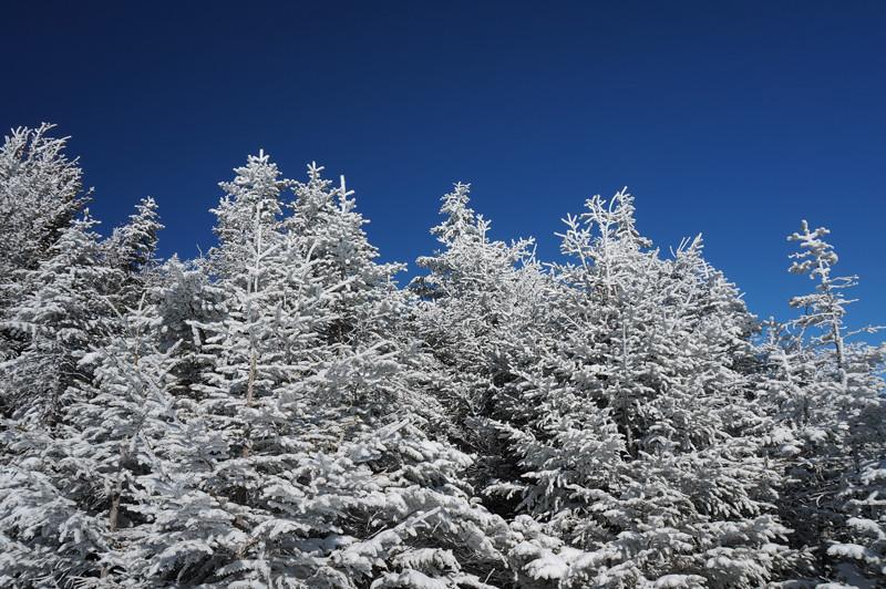 Unboring-Exploring-Giant-Mountain-Adirondacks-1G.jpg