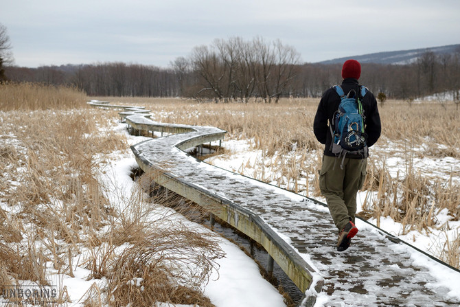Tackle 1 (or 2!) of these NY/NJ Hikes this Weekend