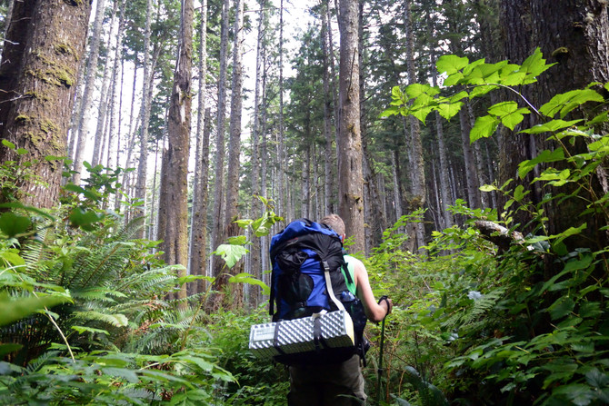 VIDEO: Backpacking the Olympic Coast Preview