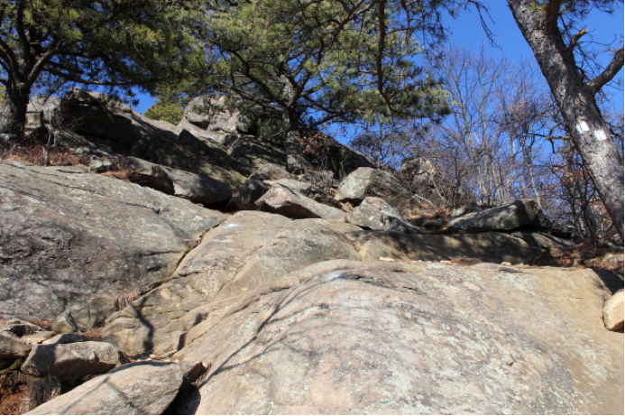 Unboring-Exploring-Breakneck-Ridge-Submission_13.png