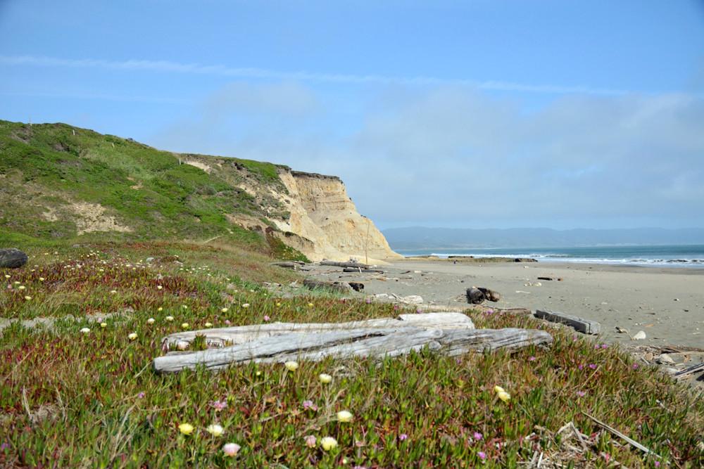 unboring-exploring-point-reyes-national-seashore-drakes-beach-01