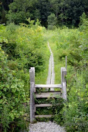 pochuck-boardwalk-krysti-sabins-unboring-exploring-05