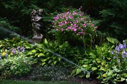 Garden with irrigation