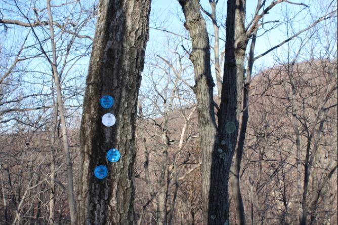 Unboring-Exploring-Breakneck-Ridge-Submission_18.png