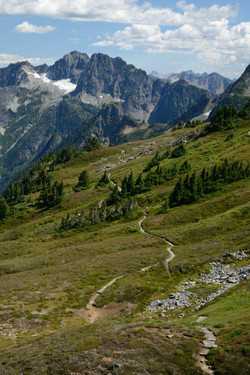 Trail in the North Cascades