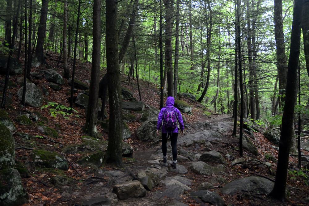 hiking-rain-harriman-trail