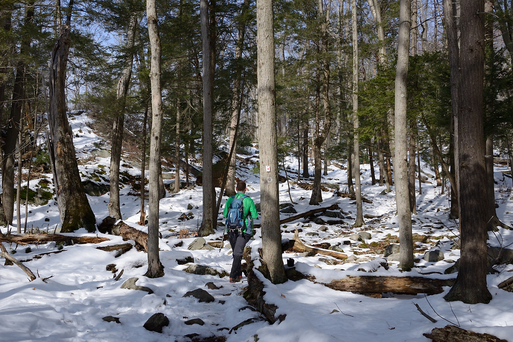 hiking-harriman-asb-trail