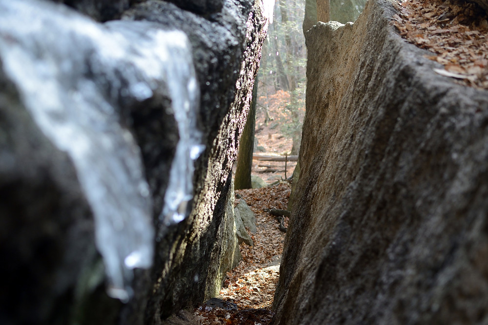 lemon-squeezer-harriman-appalachian-trail