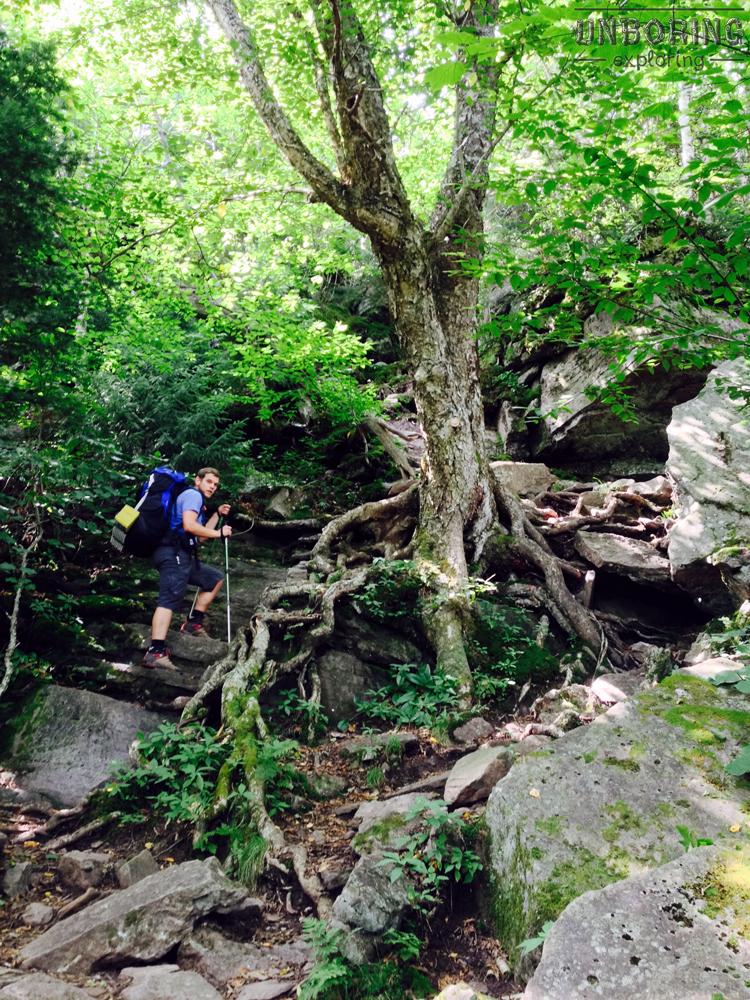 Climbing up Wittenberg