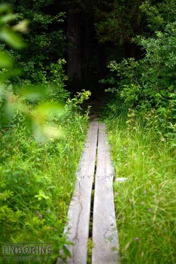 pochuck-boardwalk-krysti-sabins-unboring-exploring-01