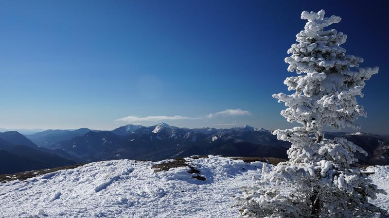 Unboring-Exploring-Giant-Mountain-Adirondacks-1K.jpg