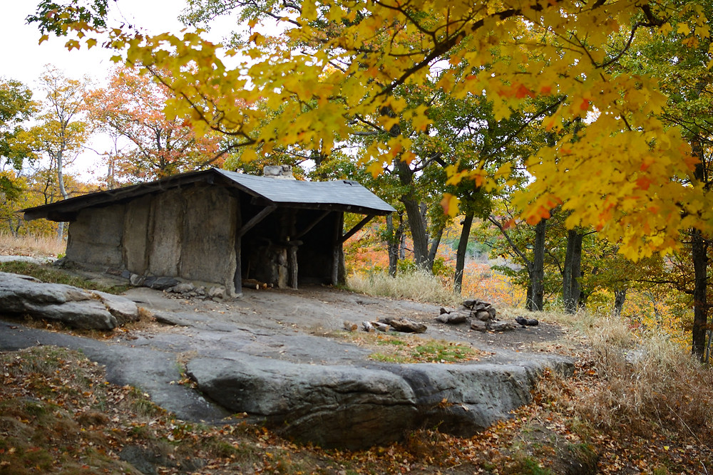 bald-rocks-shelter-harriman-state-park