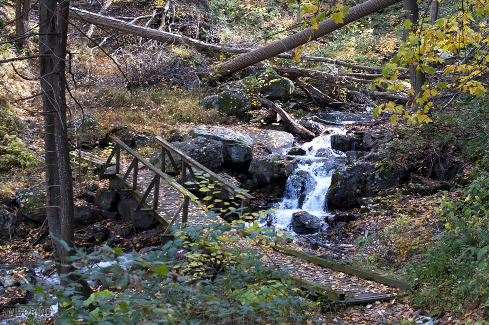 The Copper Mines Trail