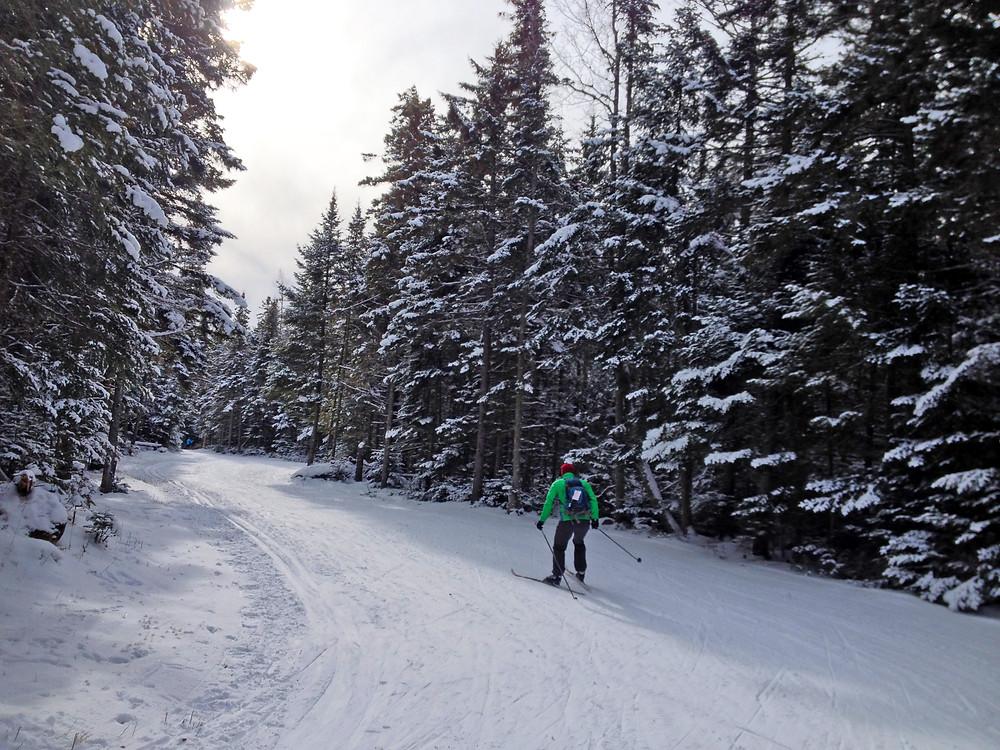 mt-van-hoevenberg-xc-ski