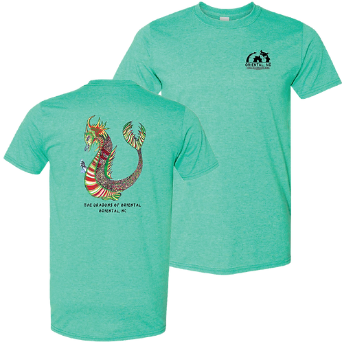 Truitt 2017 - Heather seafoam short sleeve shirt