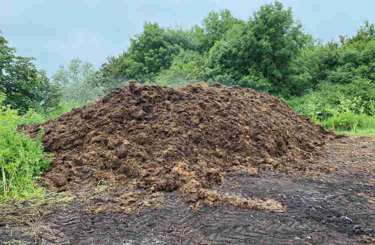 A massive steaming pile of horse manure