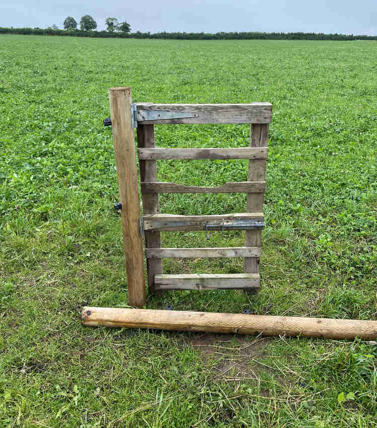 A lone gate attached to a fence post, but no fence