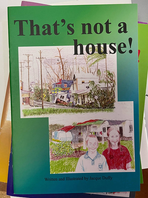 That's not a house!
