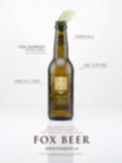 fox-flyer-A3-lime-en.jpg