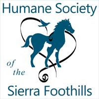 hssf-logo-square2-sm