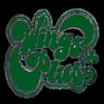Wings-Plus-logo-150x150-removebg-preview