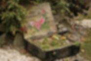 arrangement-garden-garden-plants-269290.