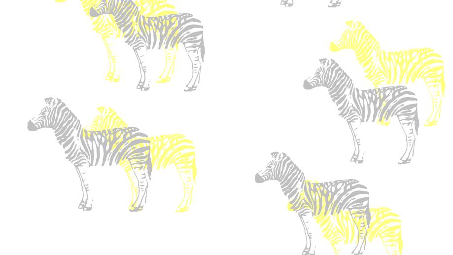 Black and Yellow Zebra