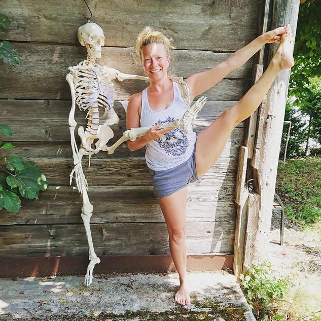 Angewandte Anatomie für Yogalehrer*innen