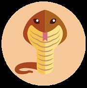desert-snake-babelerrante.png