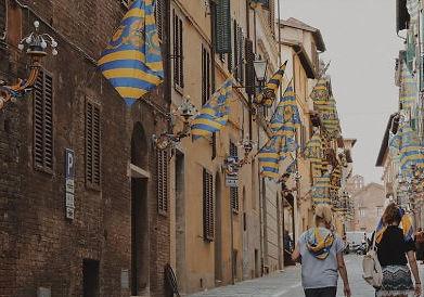 Palio straordinario di Siena contrada Tartuca