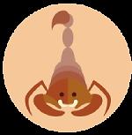desert-scorpion-babelerrante.png