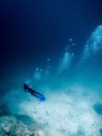 diving alle azzorre immersione relitto Dori