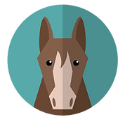 cavallo icona del palio
