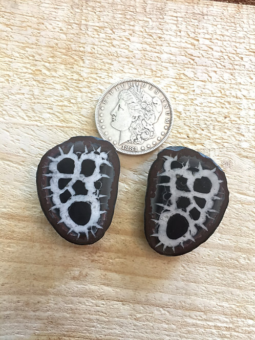 Septarian nodule pair from Morocco (Septaria) 4