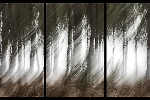 Le tourbillon (triptyque)